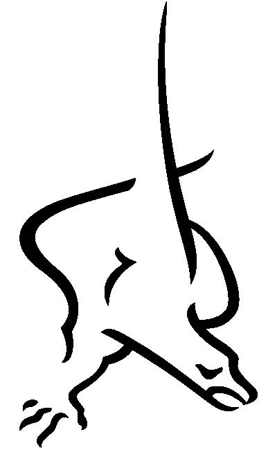 icono-aguilar-de-dios